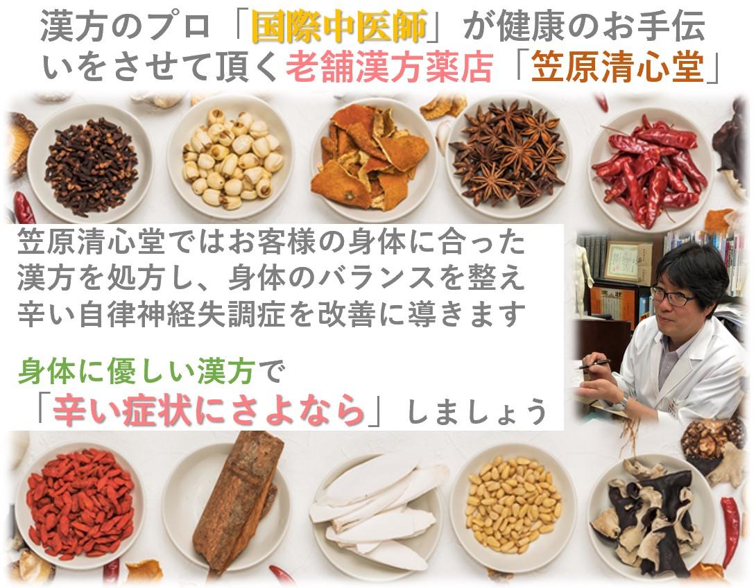 笠原清心堂プロフィール