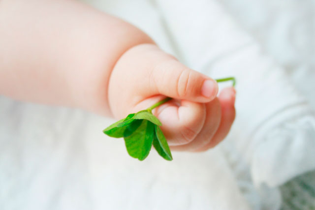 不妊治療・妊活の成功の確率を上げる